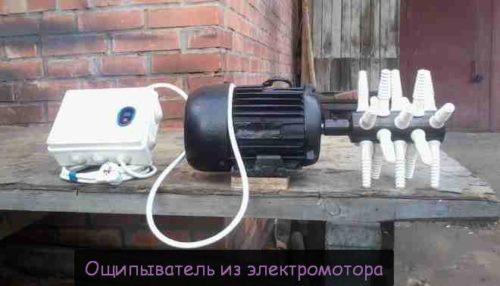 Стационарный тип ощипывателя на электродвигателе
