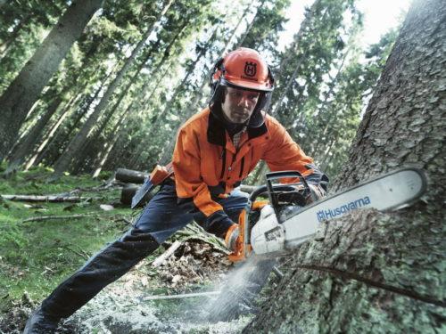 Инструкция по спиливанию толстого дерева